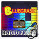 Bluegrass Radio Free by love player with flash version