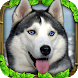 Stray Dog Simulator by Gluten Free Games