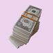 Cash Flow Show by Deb Bixler