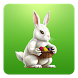 Bunny Rabbit Eggs Collector by Paul Istoan