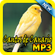 Cantos de Canario Mp3 by Topek App