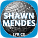 Lyrics Of Shawn Mendes by Brazilia Letras