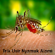 Natural Mosquito Banish Tricks by Sutriyanidroid