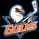 San Diego Gulls Hockey Club by Forebrain Technologies Inc