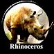 Wild Rhino Simulator 3D by Clickstech