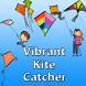 Vibrant Kite Catcher by Mrugesh Patel