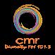 CMR Diversity FM 101.3 by CMR 101.3FM