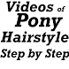 Ponytail Hairstyle Step byStep by Strongest Judgement