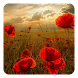 Flowers Live Wallpaper by Pro Live Wallpapers