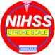NIHSS ( Stroke Scale ) by Ho Hsuhua