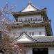 Japan:Odawara Castle(JP159) by takemovies