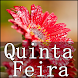 Quinta - Feira by Black house