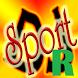Sport DJ Repair