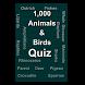Animals and Birds Quiz by Thangadurai R