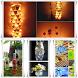 Craft Plastic Bottles by ZulMedia