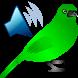 Birds Calls Sounds by remind4u2