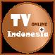 TV Online Indonesia Plus by Tirta Fajri Dev