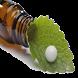 طب سنتی و داروهای گیاهی by goroh.abnos