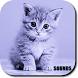 Sonidos de Gatos Gratis by Roviox