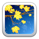 Gold Maple Leaf Live Wallpaper by Wall DEV