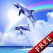 Tropical Ocean-Rainbow Trial by DMF, Inc.