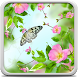 Spring Flowers Live Wallpaper by Creative Factory Wallpapers