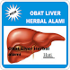 Obat Liver Herbal alami by rizaluye