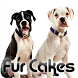 Fur Cakes - Boxers by Amplitude Metamedia Corp.