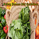 Kidney Disease Diet Guidelines by Dot Maxy