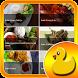 Resep Masakan Bebek by bonkapp