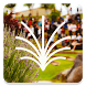 Calvary Chapel Tri-Cities by Subsplash Consulting