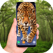 Leopard on screen - Leopard Live Wallpaper