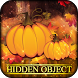 Hidden Object Worlds - Fall Festival by Beautiful Hidden Objects Games by Difference Games