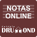 Notas Online Drummond by StudioDC