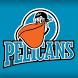 Pelicans by ESS digi