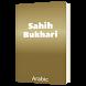 Sahih Bukhari Arabic by Taha Mahmood