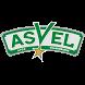 Asvel Basket