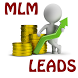 MLM Leads | Internet Marketing by WitisApps