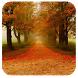 Autumn 91 Launcher Theme by Mobo Developer Team