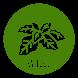 Cây Thuốc Wiki by Iljimae Apps