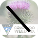 Retired Colorado Noxious Weeds by STATE OF COLORADO OIT