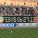 OPACY Watchface by Telion Software