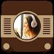 Samba Radio by Emily Saiz