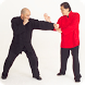 Wing Chun Techniques by HQ Apps Inc