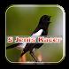Master Kicau Kacer 5 Jenis by JumatBerkah Dev