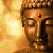 lord buddha live wallpapers by funny wallpapers fun llc