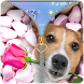 Puppy Rose Zipper lockscreen by FunnyGalaxy-BestAppsGames Corp