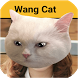 Wangcat - Wang Cat Sticker HD by BangPro