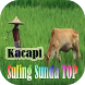 Kacapi Suling Sunda Top by Wong Jowo