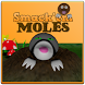 Whack 'em Moles by bruynhuis